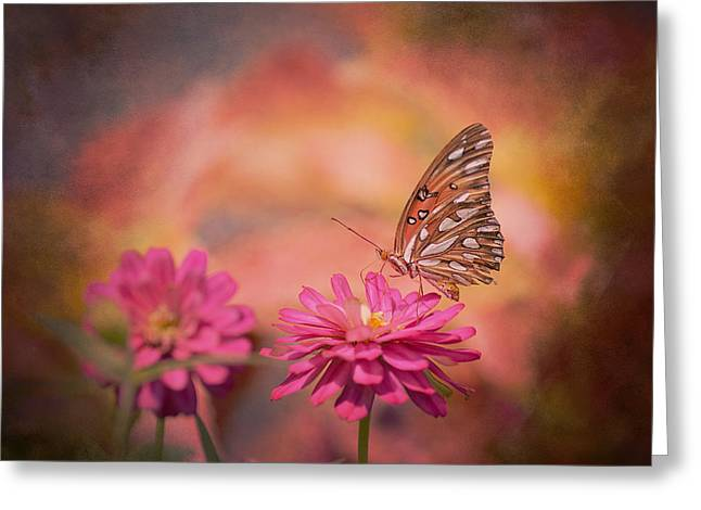 Textured Gulf Fritillary Greeting Card by Joel Olives