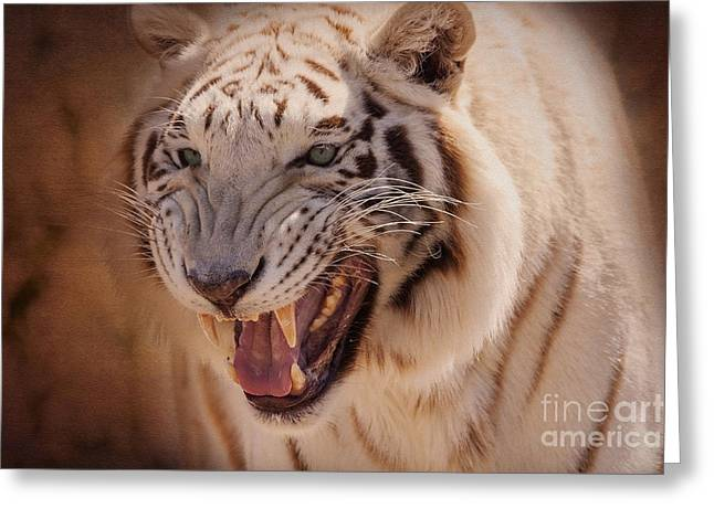 Nature Abstract Greeting Cards - Textured Tiger Greeting Card by Janice Rae Pariza