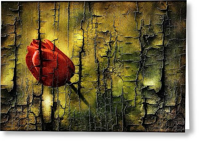 Photos With Red Greeting Cards - Textured Tulip Greeting Card by Anne Macdonald