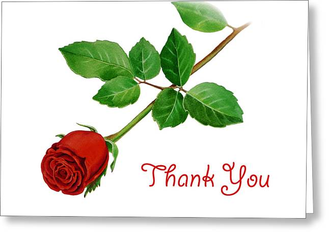 Noble Greeting Cards - Thank You Card Red Rose Greeting Card by Irina Sztukowski