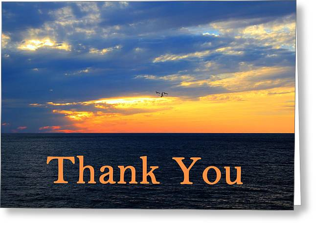 Steward Greeting Cards - Thank You Greeting Card by Shelley Neff