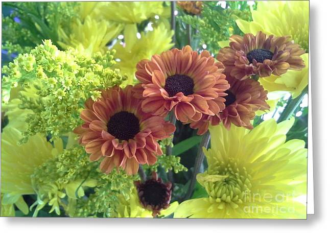 Lots Of Daisies Greeting Cards - Thanksgiving Greeting Card by Diana Hoesly