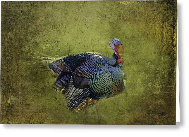 Diane Schuster Greeting Cards - Thanksgiving Is Coming Better Run Better Run Greeting Card by Diane Schuster