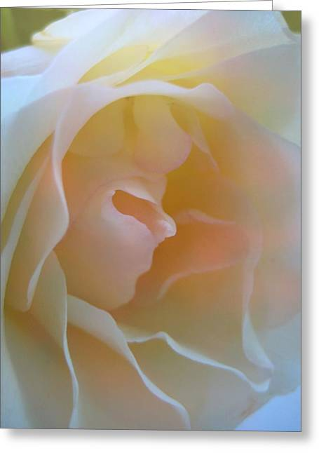 Macro Greeting Cards - That Girl Greeting Card by Shirley Sirois