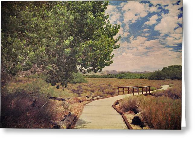 Walking Paths Greeting Cards - That Helping Hand Greeting Card by Laurie Search