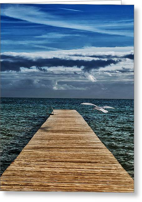 Baltic Sea Greeting Cards - That Kind of Day Greeting Card by Mountain Dreams