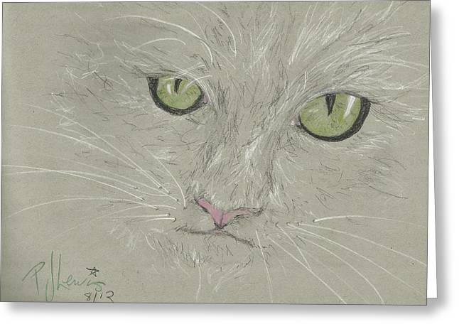 Cat Eyes Drawings Greeting Cards - That Look Greeting Card by P J Lewis