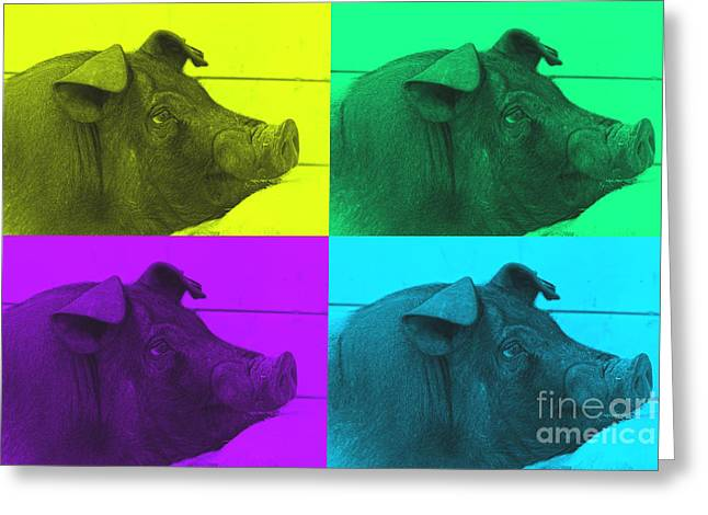 Piglets Greeting Cards - That Will Do Pig Greeting Card by Karen Anderson