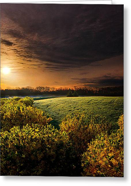 Geographic Greeting Cards - Thats Life Greeting Card by Phil Koch