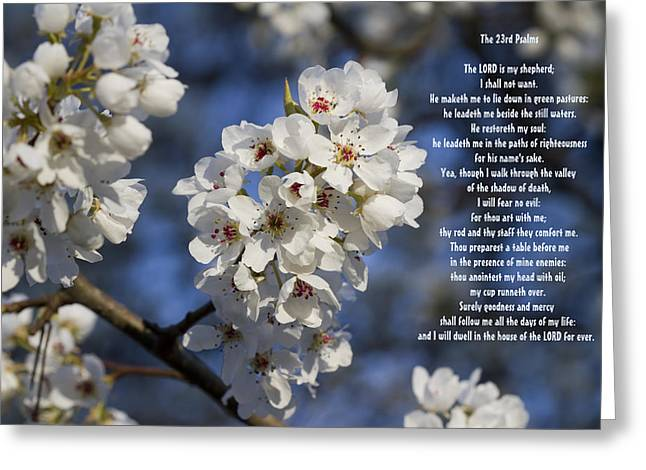 The 23rd Psalms Greeting Card by Kathy Clark