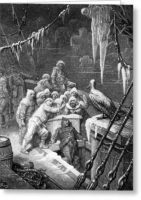 Voyage Drawings Greeting Cards - The albatross being fed by the sailors on the the ship marooned in the frozen seas of Antartica Greeting Card by Gustave Dore