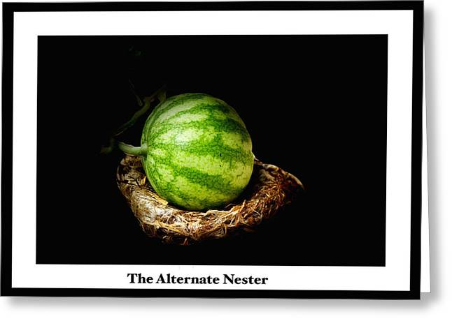 Watermelon Greeting Cards - The Alternate Nester Greeting Card by Debbie Nobile