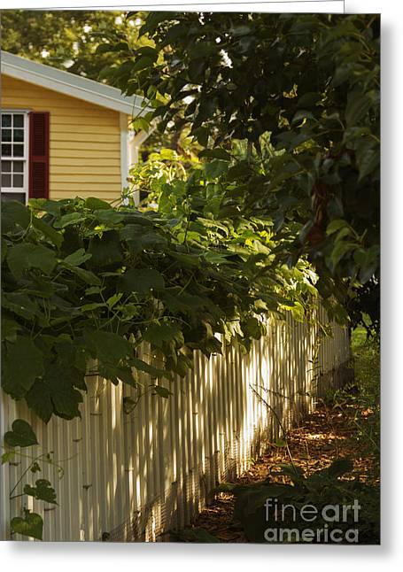 Charming Cottage Greeting Cards - The American Dream Greeting Card by Margie Hurwich