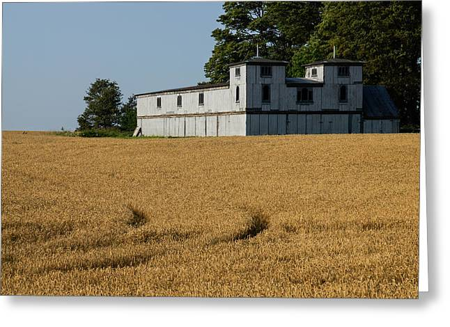 Farmers Field Greeting Cards - The Ancient Double Tower Barn in Golden Wheat Greeting Card by Georgia Mizuleva