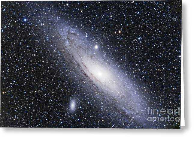 Ngc 224 Greeting Cards - The Andromeda Galaxy Greeting Card by Alan Dyer
