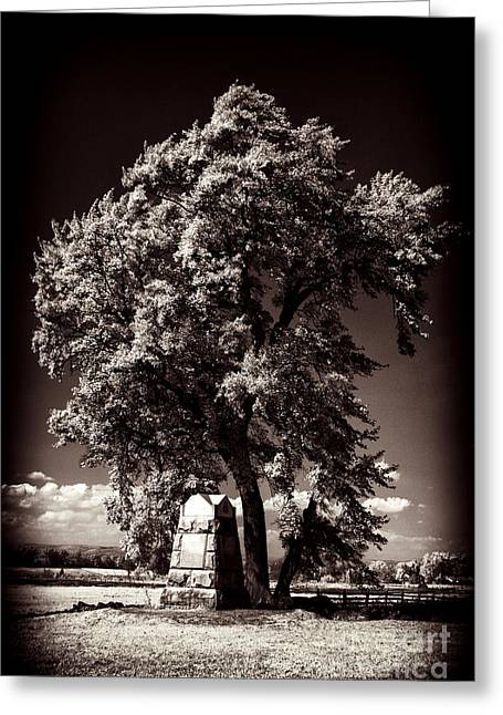 Ir Greeting Cards - The Angle Greeting Card by Paul W Faust -  Impressions of Light