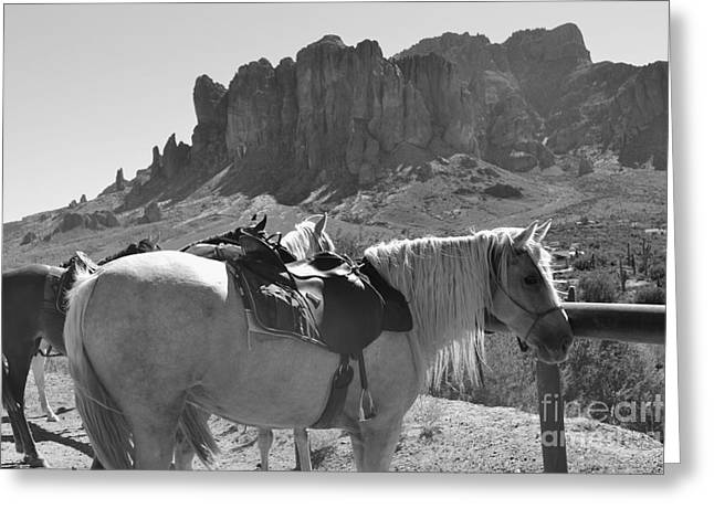 Crosswalk Greeting Cards - The Apache Trail  Greeting Card by Beverly Guilliams