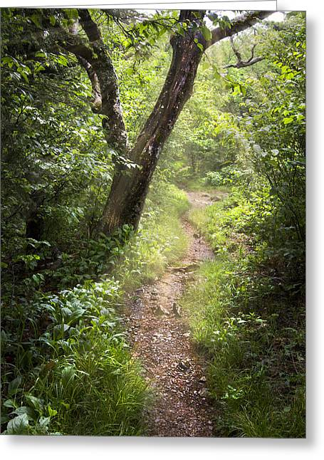 Tn Greeting Cards - The Appalachian Trail Greeting Card by Debra and Dave Vanderlaan