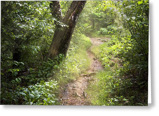 The Appalachian Trail Greeting Card by Debra and Dave Vanderlaan