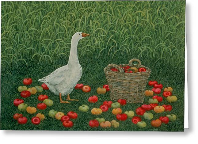 Signature Greeting Cards - The Apple Basket Greeting Card by Ditz