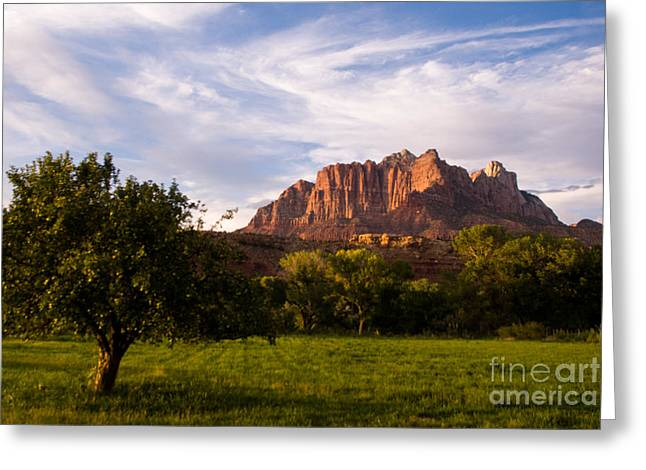 Geobob Greeting Cards - The Apple tree and Late Afternon Sun Glow on Mt Kinesava Rockville Utah Greeting Card by Robert Ford