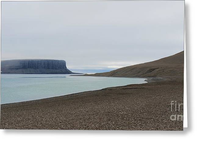 Best Sellers -  - Cliffs Over Ocean Greeting Cards - The Arctic Tundra... Greeting Card by Nina Stavlund