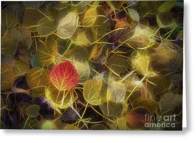 Live Digital Greeting Cards - The Aspen Leaves Greeting Card by Veikko Suikkanen