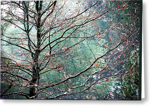 The Aura Of Trees Greeting Card by Angela Davies