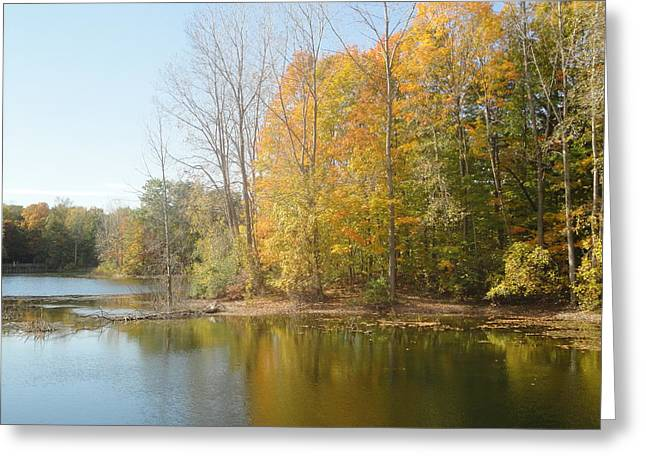 Guy Ricketts Photography Greeting Cards - The Autumn Lake Greeting Card by Guy Ricketts