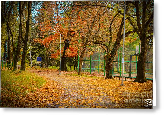 Without Content Greeting Cards - The autumn season 1  Greeting Card by Elfatik Ajdari
