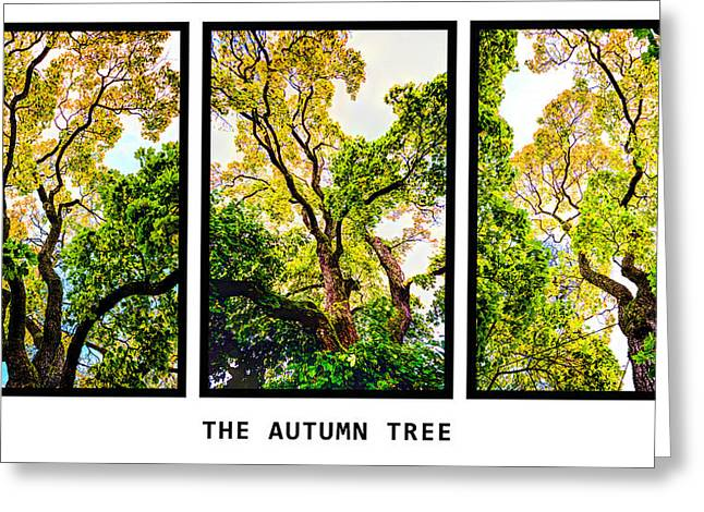 Hdr Landscape Mixed Media Greeting Cards - The autumn tree Greeting Card by Toppart Sweden