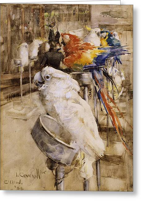 Parrots Greeting Cards - The Aviary, Clifton, 1888 Greeting Card by Joseph Crawhall