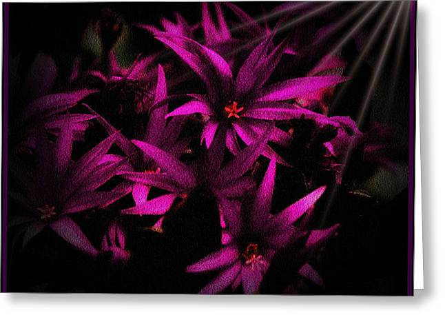 Fushia Greeting Cards - The Awakening Greeting Card by Sheryl Bergman