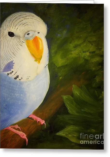 Abigail Greeting Cards - The Baby Parakeet - Budgie Greeting Card by Lady I F Abbie Shores