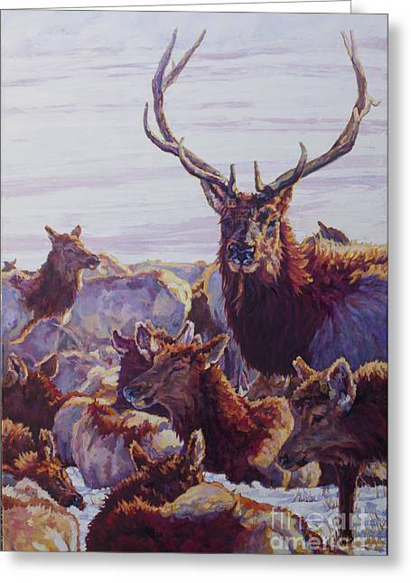 Wildlife Refuge. Paintings Greeting Cards - The Bachelor Greeting Card by Patricia A Griffin