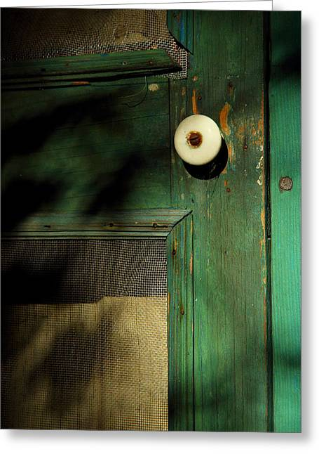 Screen Doors Greeting Cards - The Back Door Greeting Card by Michael Eingle