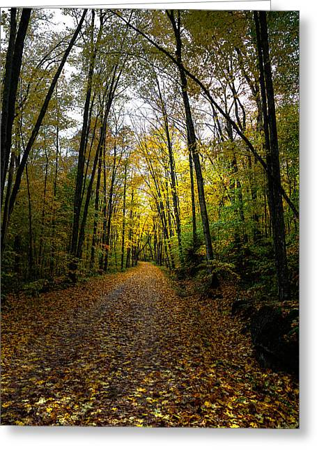 Old Country Roads Greeting Cards - The Back Roads of Autumn Greeting Card by David Patterson