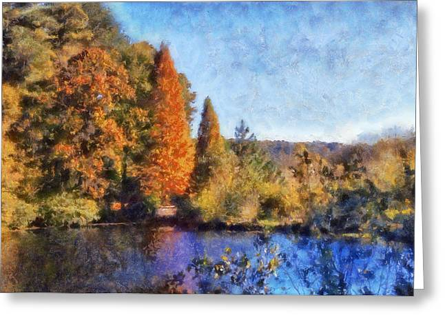 Autumn Scenes Digital Art Greeting Cards - The Bald Cypress Greeting Card by Daniel Eskridge