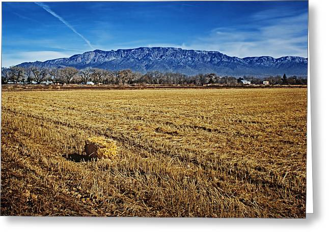 Hay Bales Greeting Cards - The Bale - Sandia Mountains - Albuquerque Greeting Card by Nikolyn McDonald