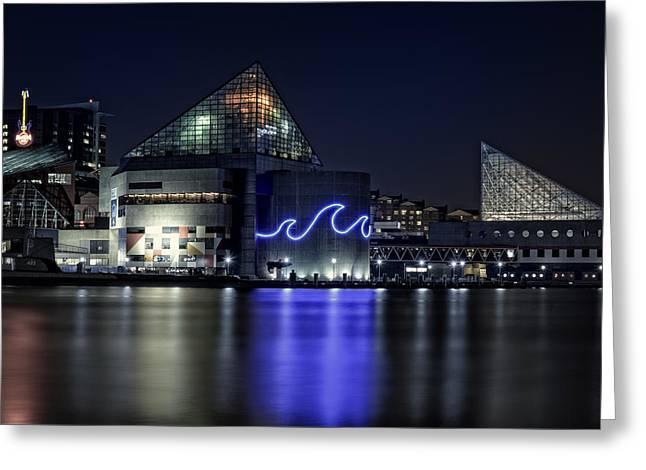 The Baltimore Aquarium Greeting Card by Rick Berk