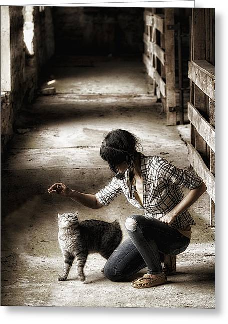 Ron Woods Greeting Cards - The Barn Cat Greeting Card by Ron  McGinnis