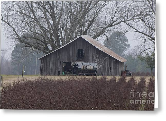 Barn Yard Greeting Cards - The Barn Greeting Card by Dewayne Hayes