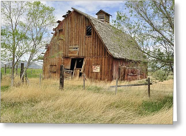 Daysray Photography Greeting Cards - the Barn  Greeting Card by Fran Riley