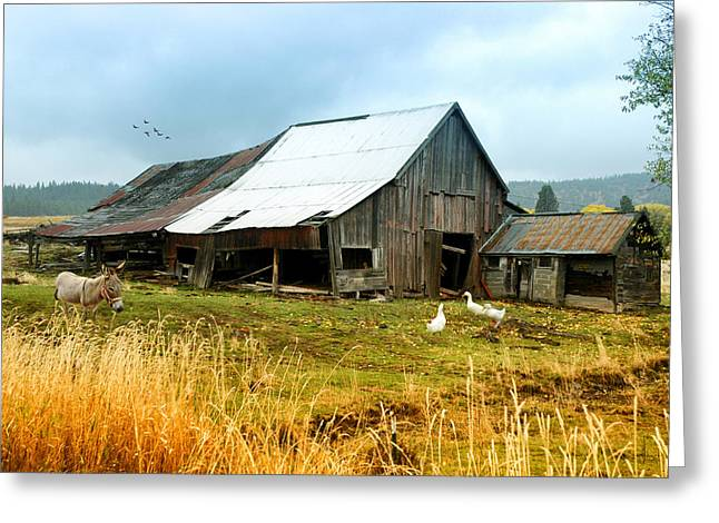 The Barnyard Bunch Greeting Card by Mary Timman