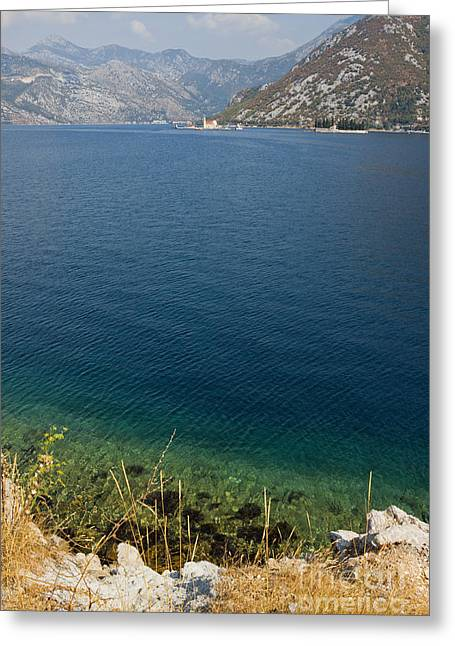 Sea View Greeting Cards - The Bay of Kotor in Montenegro Greeting Card by Kiril Stanchev