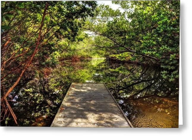 Fishing Creek Greeting Cards - The Bayou Greeting Card by Mal Bray