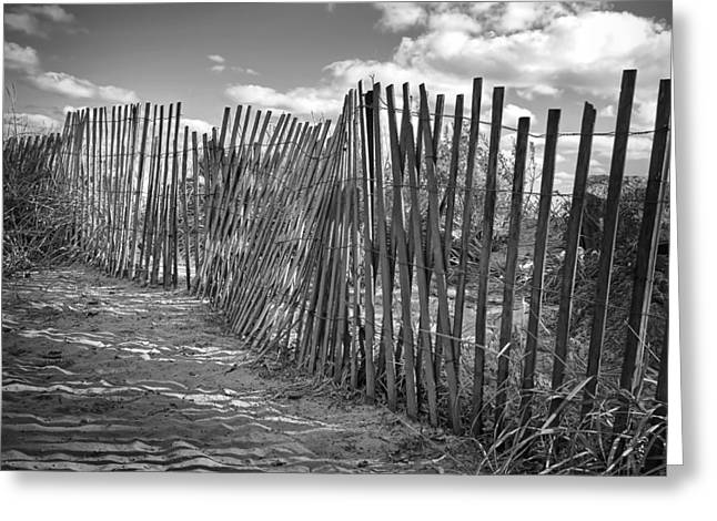 Sand Fences Photographs Greeting Cards - The Beach Fence Greeting Card by Scott Norris