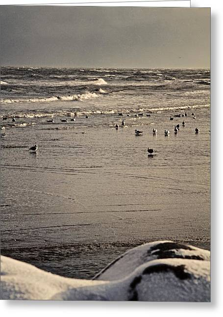 Saeby Greeting Cards - The Beach Is Ours Greeting Card by Odd Jeppesen