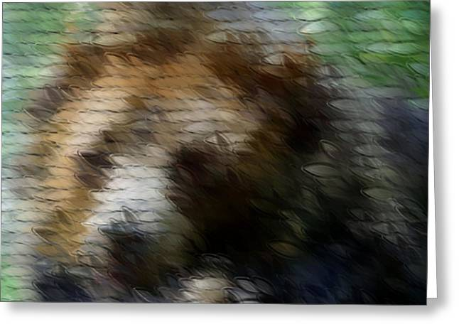 House Pet Mixed Media Greeting Cards - The Bear Greeting Card by Sean McDaniel