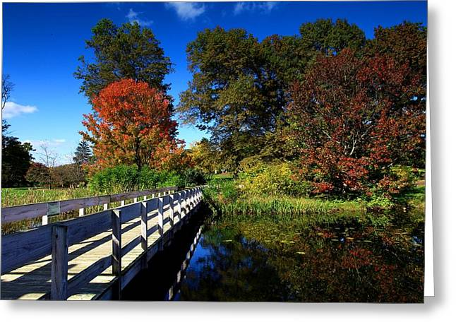 Ithaca Greeting Cards - The beautiful autumn in Ithaca New York Greeting Card by Paul Ge